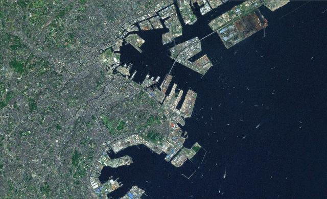 国際コンテナ戦略港湾 横浜港(神奈川県横浜市)|土木ウォッチング